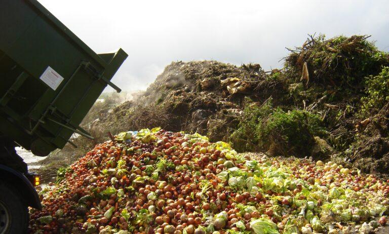 переработка пищевых отходов